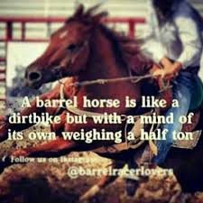 Barrel Racing Quotes Mesmerizing Pin By Alicia Lee On Barrel Racing Pinterest Horse Barrels And