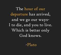 Famous Philosophy Quotes Gorgeous Pjilisophy Quotes Quotes Famous Plato Quotes Greek Philosophy