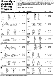 Dumbbell Training Two Dumbbells And A Flat Bench Are The