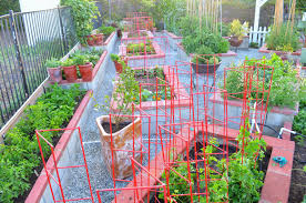 Kitchen Garden Plants Entertaining From An Ethnic Indian Kitchen Garden Tour 2 The