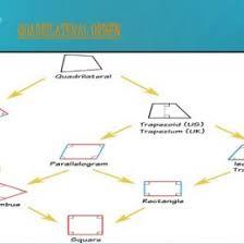Venn Diagram Of Quadrilaterals Schematic Diagram Quadrilateral Wiring Diagram