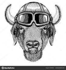 животных носить шлем летчика с очки векторный рисунок буффало
