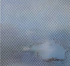 beyond the former middle east ibraaz driss ouadahi fences hole 2 2011 oil on linen