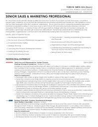Professional Marketing Resumes W Smith Senior Sales Marketing ...