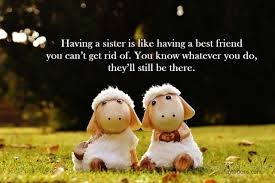 Funny Sister Quotes 1 Funnies Sister Quotes Funny Sister Quotes