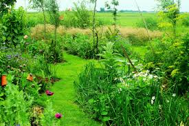 Permaculture Garden Design Ideas Keyhole What Is Permaculture Gardening An Intro To Permaculture
