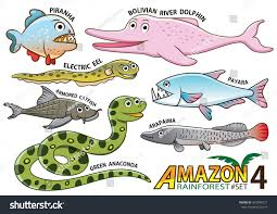 Anaconda River Dolphin Coloring Pages With Set Cute Cartoon Animals