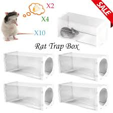 lot rat live trap bottle mice mouse mole rodent humane cage control catch bait 1 of 1free see more