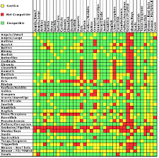 Marine Aquarium Fish Compatibility Chart
