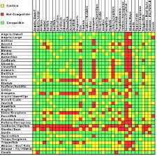 Saltwater Fish Compatibility Chart Marine Aquarium Fish Compatibility Chart