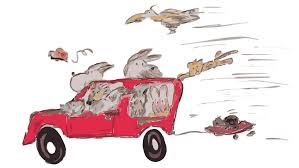 driver animals
