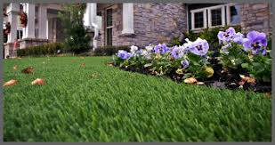 artificial turf yard. Wonderful Yard ARTIFICIAL GRASS FOR Throughout Artificial Turf Yard G
