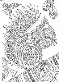 Squirrel Coloring Pages Coloring Pages Squirrel Coloring Page