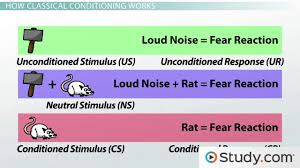 classical conditioning vs operant conditioning differences and classical conditioning