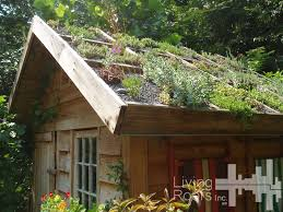 green roofs 25