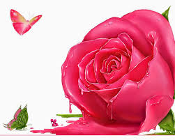 Roses Flowers Wallpapers Beautiful Pink Rose Flowers Wallpaper With Butterfly