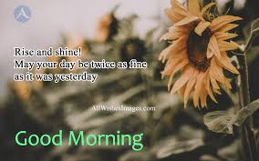30 Good Morning Quotes In English For Whatsapp 2018 Gm Images