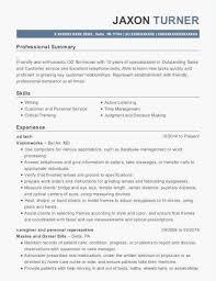 Executive Resume Samples 2016 Elegant Customer Service Officer