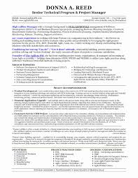 Project Manager Resume Templates Elegant Download Technical