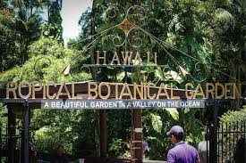 aloha hawaii welcomes you to the greatest preservation of natural history and pristine beauty in the middle of the pacific ocean the garden valley by the