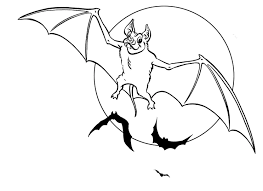 Small Picture Bat Coloring Pages 9338
