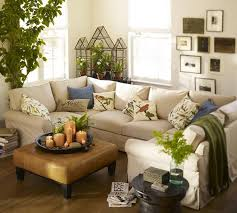 Small Country Living Room Ideas Photo   3