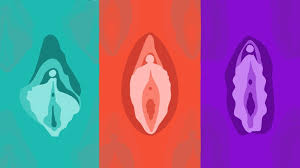The Hidden Way Size Chart Clitoral Hood Size Appearance And Effect On Orgasm