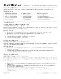 Sales Executive Sample Resume It Executive Resume Samples Resume Sample Page 2 Executive Assistant