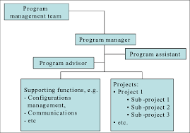 Org Chart Program General Organization Chart Of The Case Program Download
