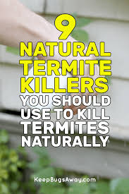 natural termite killer. Interesting Natural Solutions In Everything About Pest Control Natural Termite Killer K