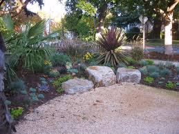 drought tolerant garden. Very Drought-tolerant, Low Maintenance, And Year-round Beautiful Garden Mediterranean- Drought Tolerant