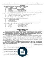 a model argumentative essay traffic road traffic safety solar pmr bi ex 1 jan week 2 docx