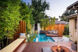 View in gallery Shape a stunning backyard with the ideal small pool[Design:  Apex landscapes]