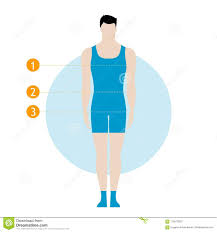 Body Fitness Chart Male Body Measurement Chart Figure Of The Guy Model In