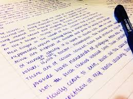 professional essay writing tips non plagiarized term papers and essay