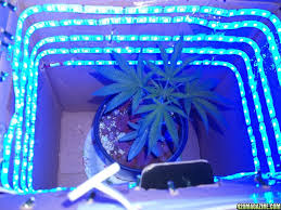 do it yourself led lighting. Diy Grow Light Led Strip Virtual Fretboard With Do It Yourself Lighting L