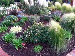 Small Picture 23 best No Lawn images on Pinterest Backyard ideas Garden ideas