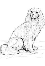Small Picture Dog Coloring Pages by YUCKLES dog 3 Pinterest Dog