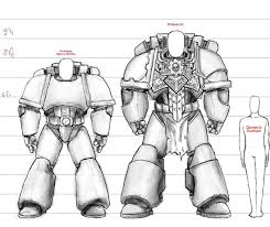 Human And Space Marine Size Chart Warhammer Art Warhammer