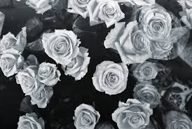 black and white hipster tumblr backgrounds. Interesting And Black And White Hipster Tumblr Backgrounds  Google Search And Black White Hipster Tumblr Backgrounds Pinterest