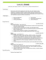 Resume Summary Inspiration Professional Summary Example For Resume Zoro40terrainsco