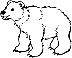 Small Picture Coloring Page Pages Draw A Polar Bear mosatt