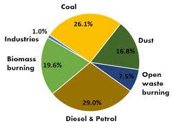 Whats Polluting Delhis Air
