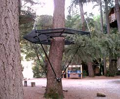 simple tree platforms. Interesting Simple Zip Perch C With Simple Tree Platforms