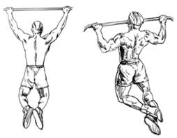 chin ups biceps and triceps workout without weights