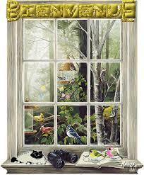 """Résultat de recherche d'images pour """"gifs oiseaux dans la mangeoire"""""""