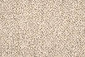 cream carpet texture. West Coast_Bethells Coast_Muriwai Coast_Ninety Mile Coast_Piha Cream Carpet Texture T