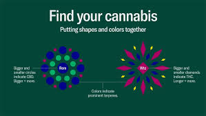Cannabis Strain Chart Leafly Has Devised A New Way Of Visualizing Marijuana Strain