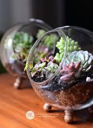 a glass bowl how to make a glass terrarium glass bowl stadium seating chart glass bowl a glass bowl
