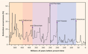 Extinction Timeline Chart Mass Extinctions And Climate Variability Biology 1520
